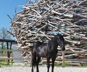 Stork-Nest-Farm-SGL-Projekt-15